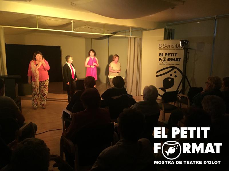 EL PETIT FORMAT 2017-34 copia
